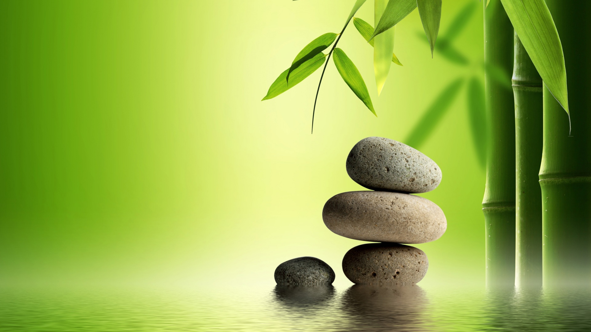 bamboo-stone